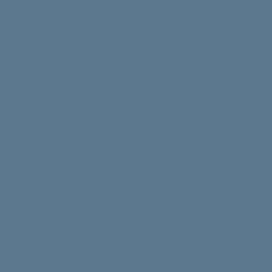 Icone T shirt